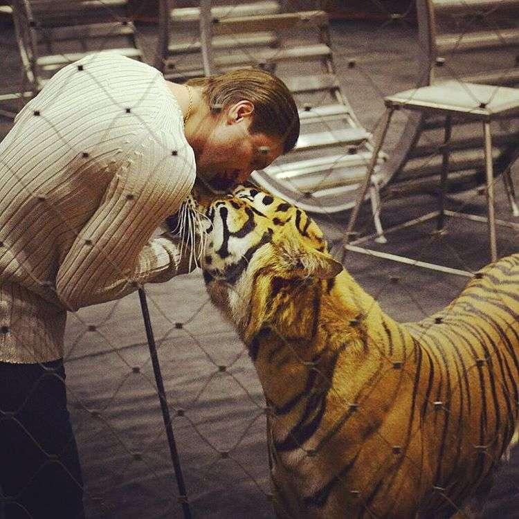 «Как страшно!»: Аскольда Запашного поцарапал разыгравшийся во время дрессировки лев